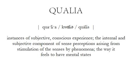 Qualia Definition