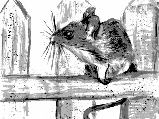 The Scarlet Hourglass - Field Mouse