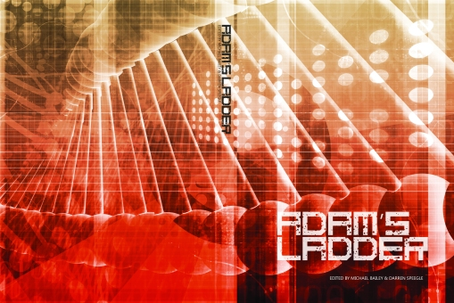 COVER - ADAM'S LADDER 2.jpg